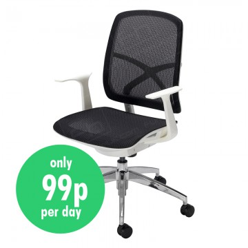 Langley Mesh Back Office Chair Daily