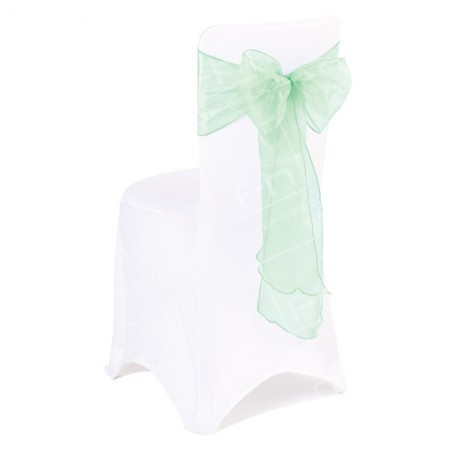 Mint Green Bow